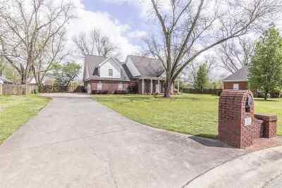 Single Family Home For Sale: 217 Noah Lane