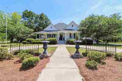 Fort Valley Single Family Home For Sale: 246 Ray Road