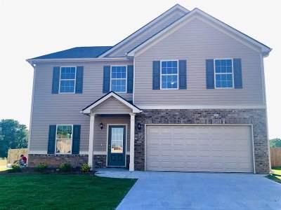 Single Family Home For Sale: 192 Amelia Drive