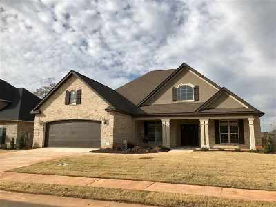 Single Family Home For Sale: 307 Angelina Grace Drive