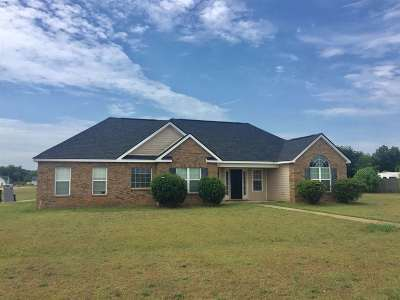 Fort Valley Single Family Home For Sale: 272 Papershell Drive