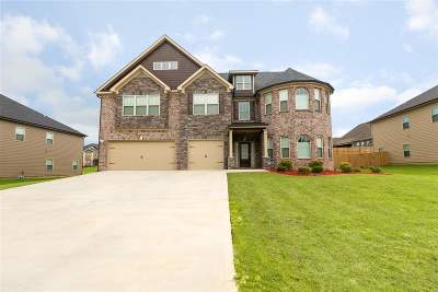 Kathleen Single Family Home For Sale: 602 Shoshone Circle
