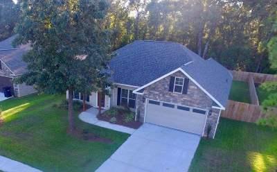 Kathleen Single Family Home For Sale: 208 Amherst Street