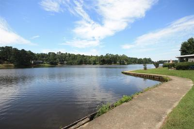 Warner Robins Single Family Home For Sale: 247 Leisure Lake Drive