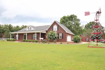 Single Family Home For Sale: 11811 Ga Highway 42 S