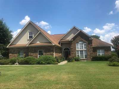Single Family Home For Sale: 542 Southland Trail