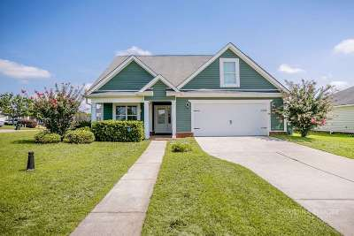 Warner Robins Single Family Home For Sale: 100 Mount Pilot Court