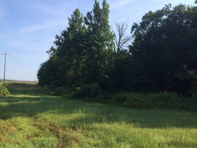 Perry Residential Lots & Land For Sale: 486 Hodge Road