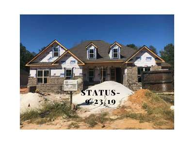 Single Family Home For Sale: 205 Pine Trace Lane