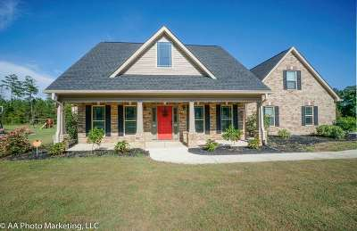 Bibb County, Crawford County, Houston County, Peach County Single Family Home For Sale: 138 Delenn Drive