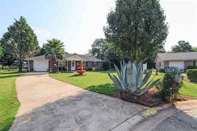 Fort Valley Single Family Home For Sale: 426 William Drive