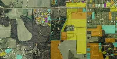 Peach County Residential Lots & Land For Sale: John E Sullivan Rd Tract 4- A2 & C