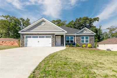 Macon Single Family Home For Sale: 479 Southern Oaks Drive