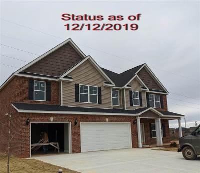 Single Family Home For Sale: 230 Ashley Nicole Avenue
