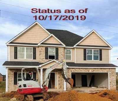 Single Family Home For Sale: 232 Ashley Nicole Avenue