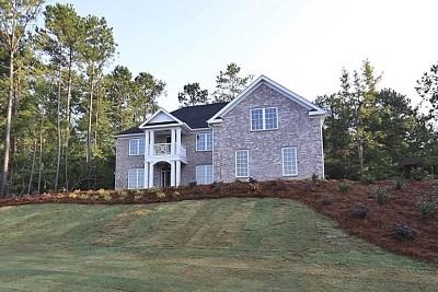 Columbus Single Family Home For Sale: 8656 Creekrise Drive