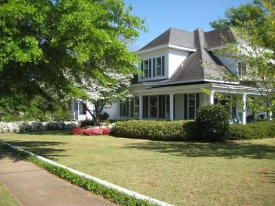 Buena Vista Single Family Home For Sale: 108 N Church Street