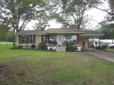 Phenix City Single Family Home For Sale: 1066 Lee Road 0230