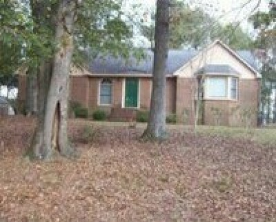 Buena Vista Single Family Home For Sale: 1162 Highway 41 North