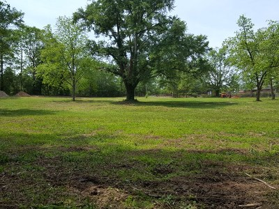 Residential Lots & Land For Sale: 5432 & 5440 Buena Vista Road