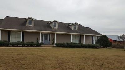Buena Vista Single Family Home For Sale: 1234 Blueville Road