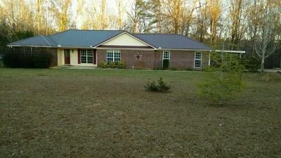 Buena Vista Single Family Home For Sale: 151 Shady Lane