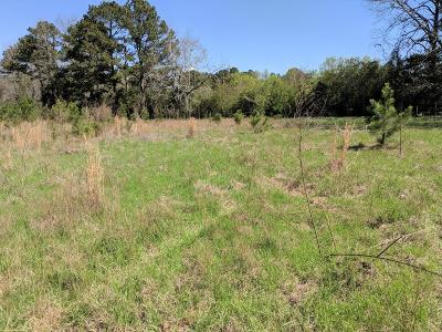 Muscogee County Single Family Home For Sale: Lot 22 County Line Road
