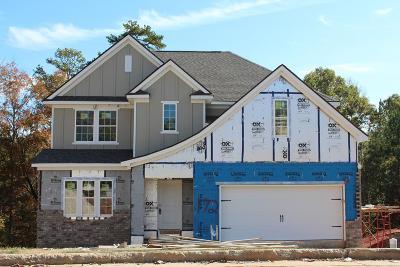 Columbus Single Family Home For Sale: 6880 Shadybrook Trail