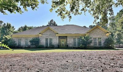 Harris County Single Family Home For Sale: 654 Franklin Creek Drive