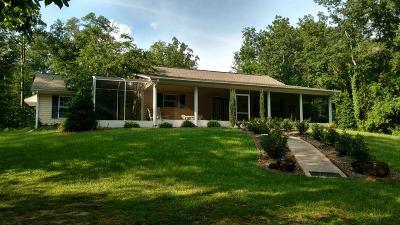 Buena Vista Single Family Home For Sale: 2297 Mount Zion Road