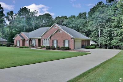 Midland Single Family Home For Sale: 1205 Leaf Brook Drive