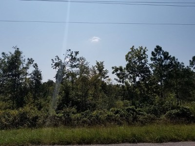 Pine Mountain GA Residential Lots & Land For Sale: $150,000