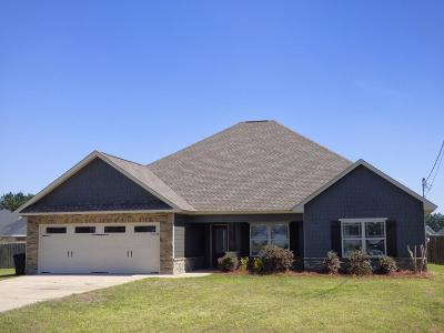 Russell County, Lee County Single Family Home For Sale: 17 Farmboy Court