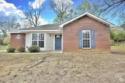 Columbus Single Family Home For Sale: 719 Winall Drive
