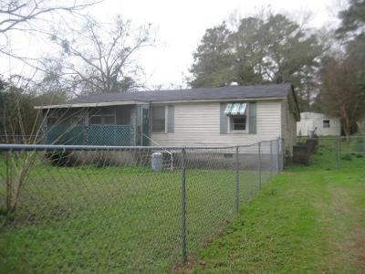 Phenix City Single Family Home For Sale: 344 Lee Road 0213