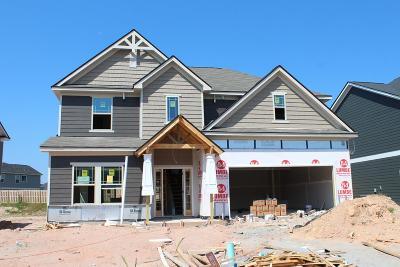 Midland Single Family Home For Sale: 7139 Pine Seed Drive