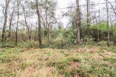Residential Lots & Land For Sale: Lot 6 33rd Avenue South