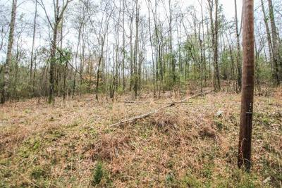 Residential Lots & Land For Sale: Lot 7 33rd Avenue South
