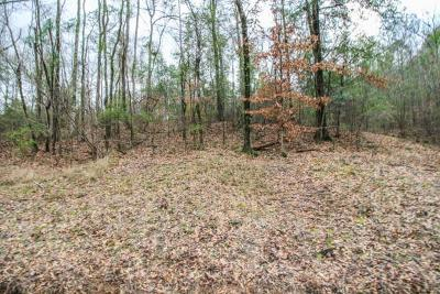 Residential Lots & Land For Sale: Lot 8 33rd Avenue South