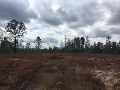 Russell County, Lee County Single Family Home For Sale: Lot 6 Oswichee Road