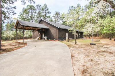 Buena Vista Single Family Home For Sale: 2749 Backbone Ridge Road