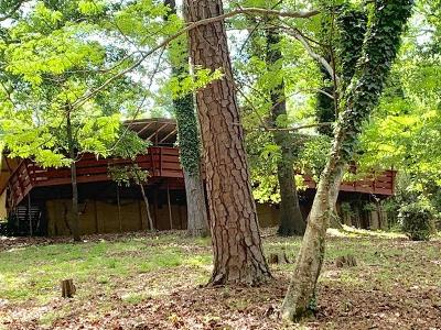 Columbus Single Family Home For Sale: 5515 Roaring Branch Road
