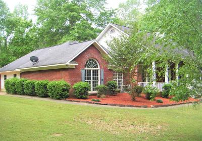 Midland Single Family Home For Sale: 117 Rocky Falls Drive #midla