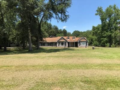 Russell County, Lee County Single Family Home For Sale: 238 Kinchafoonee Creek Road