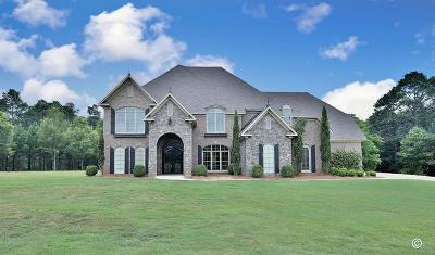Harris County Single Family Home For Sale: 179 Overlook Drive
