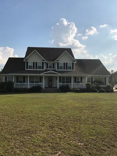 Douglas Single Family Home For Sale: 556 Blackwater Drive