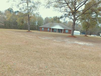 Fitzgerald Single Family Home For Sale: 231 Douglas Highway