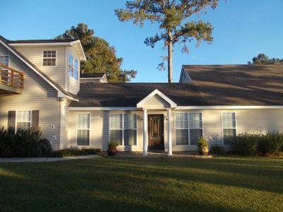 Douglas Single Family Home For Sale: 434 Island Drive