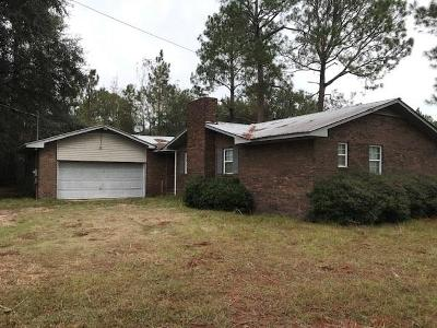 Douglas Single Family Home For Sale: 461 Miller Road