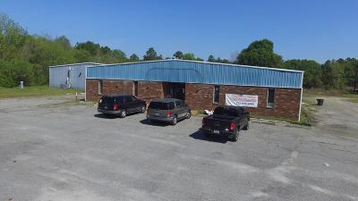 Alma GA Commercial For Sale: $475,000